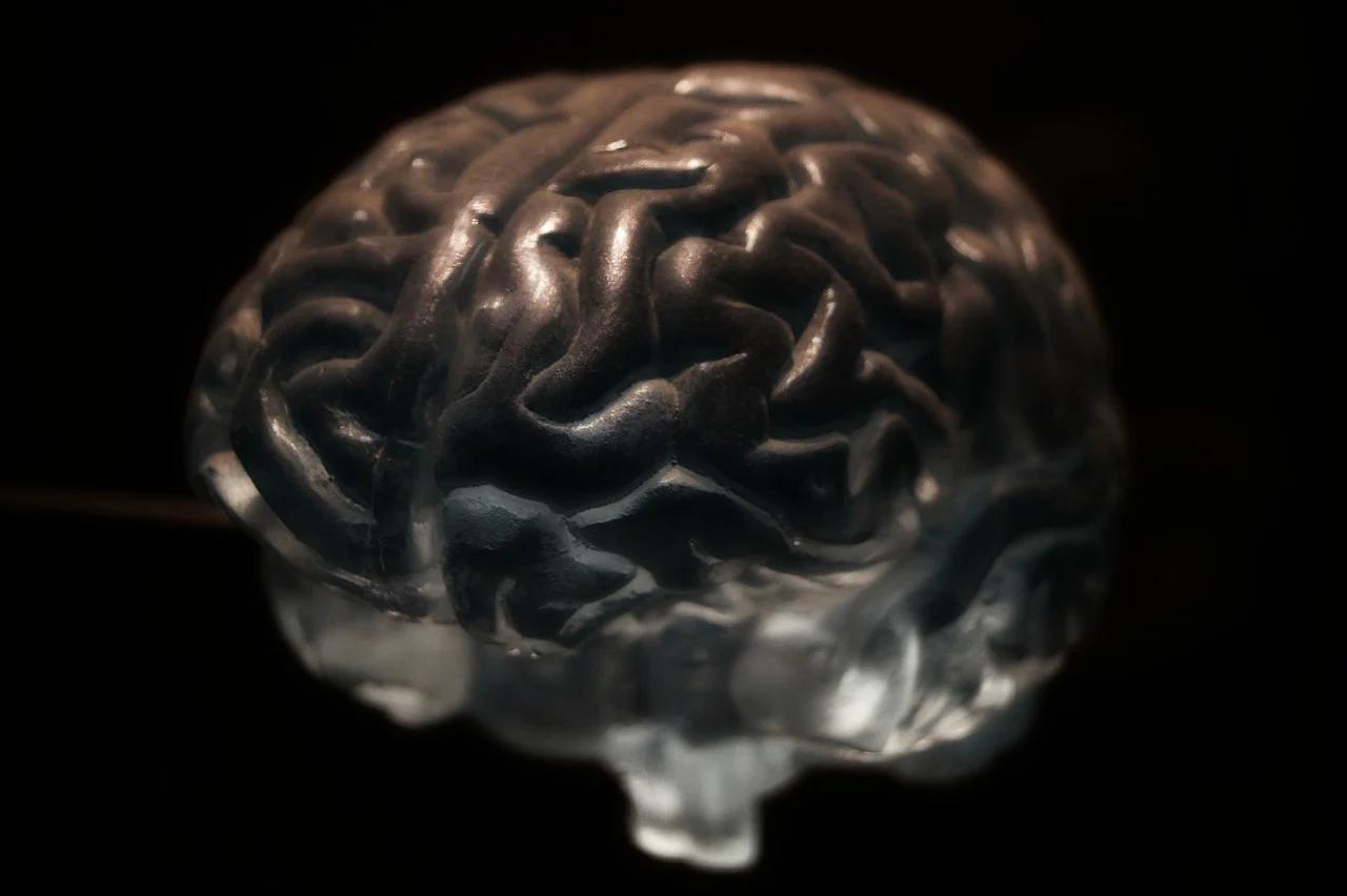 neuroscienze menzogna