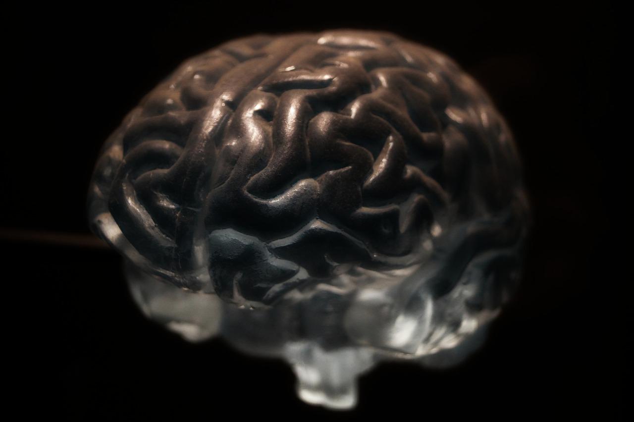 emozioni fanno bene al sistema immunitario