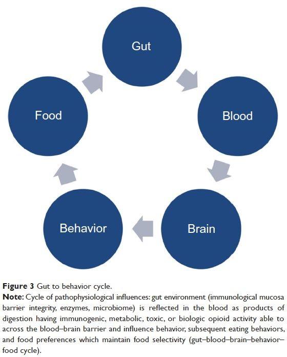 ciclo cervello intestino comportamento