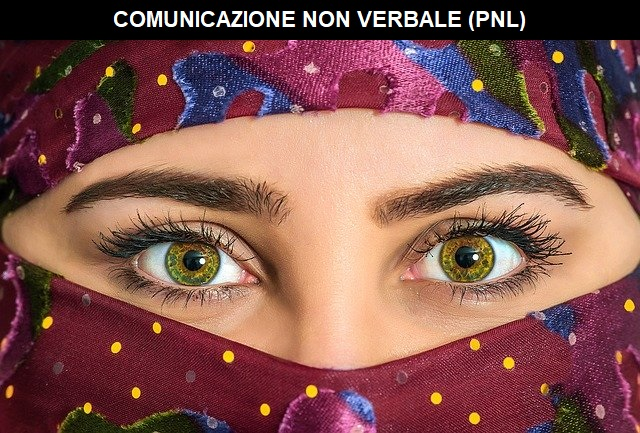 comunicazione non verbale pnl