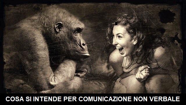 cosa si intende per comunicazione non verbale
