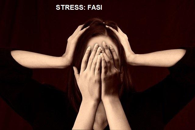 stress fasi