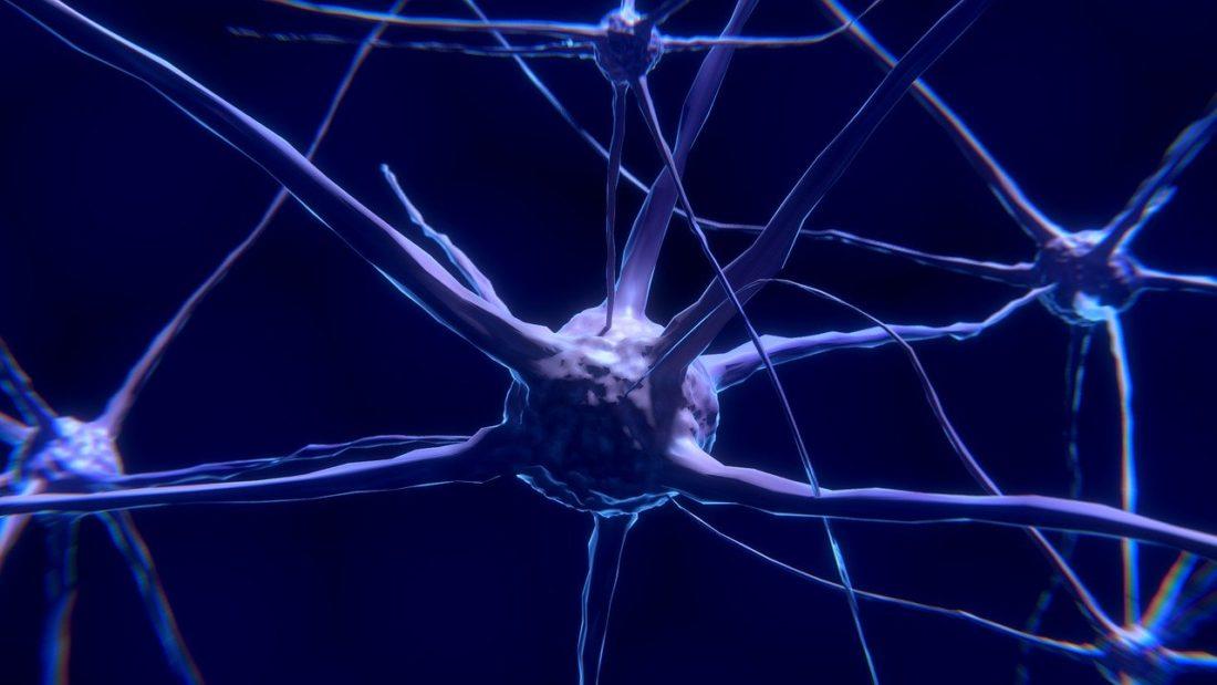 stress effetti memoria