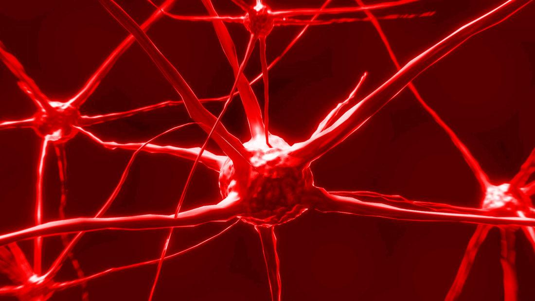 relazioni sessuali cervello